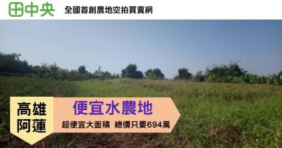 阿蓮青安水農地