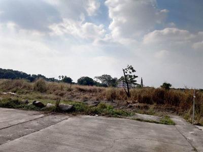 路竹環球工業區鄰近農地